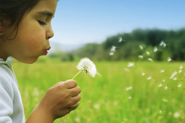 Child-with-a-dandelion_5120x3200